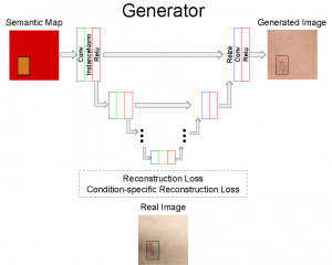 Generating Diverse Synthetic Medical Image Data for Training Machine Learning Models